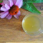 Kořeněný likér a tinktura z echinacei